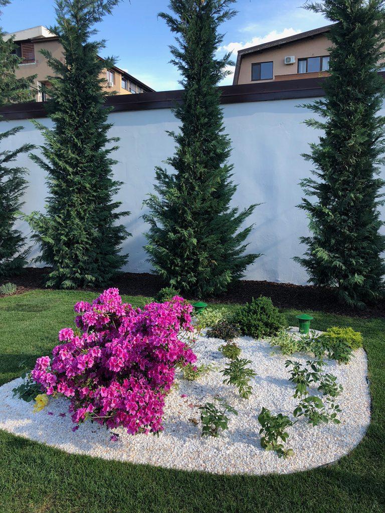Gradina Armonia, amenajare peisagistica in Bucuresti | Natural Design