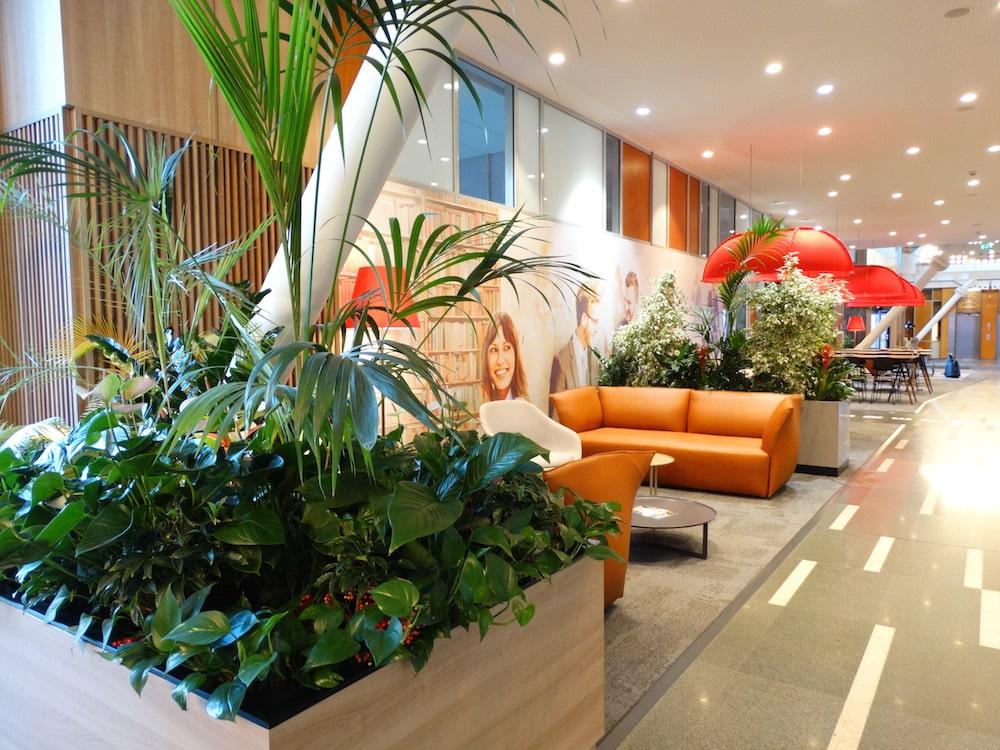 Jardiniere cu plante de interior