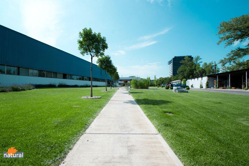 Proiect amenajare parc pe Fabrica de Glucoza
