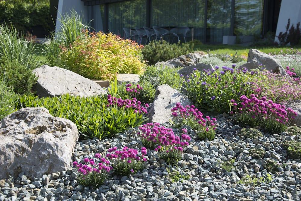 Rocarii: amenajari decorative cu piatra naturala