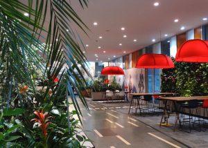 Amenajam gradini interioare in birourile din Bucuresti